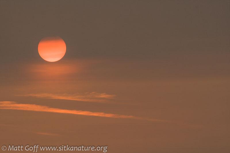 Smokey Sun