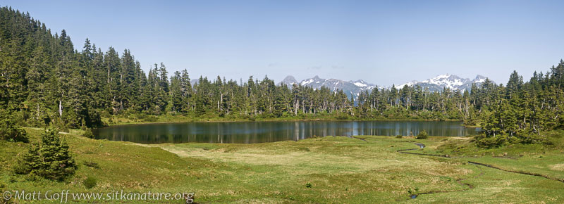 Baby Bear Lake Panorama