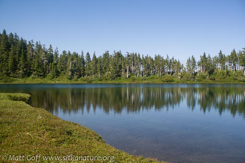 Baby Bear Lake