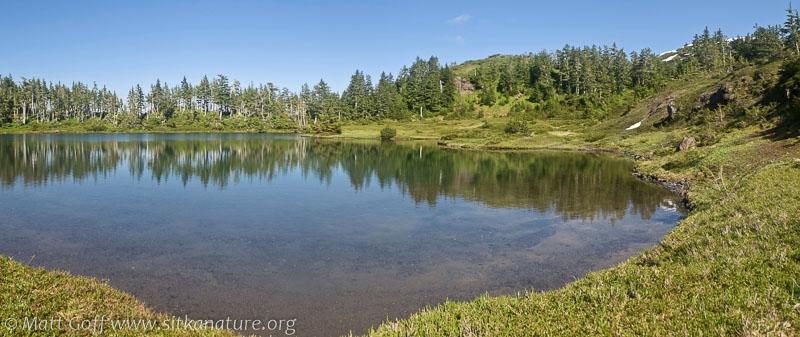 Baby Bear Lake Panorama