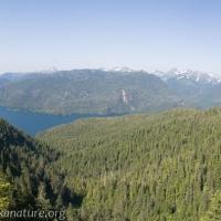 Katlian Bay from Starrigavan Ridge