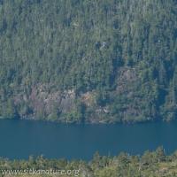 Katlian Bay Outcrops