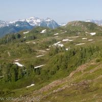 Starrigavan Ridge