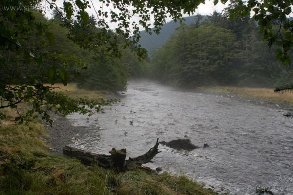 Indian River Fog