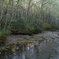 Fall along Indian River