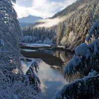 Salmon Creek Estuary