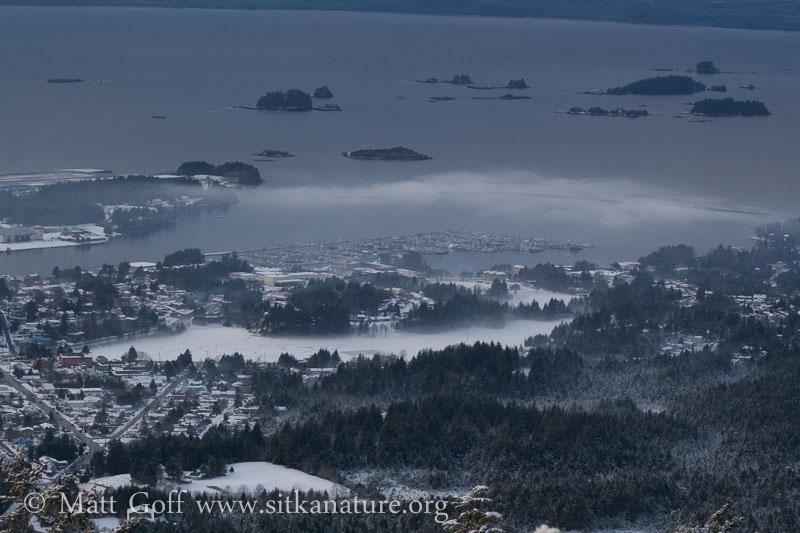 Sitka View