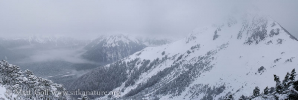 Winter on Verstovia (panorama)
