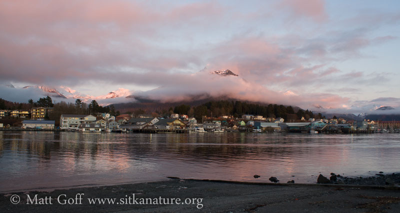 Pink Clouds Skirting Mountains