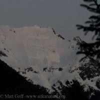 Bear Mountain Avalanche