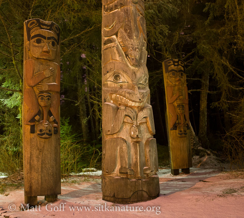 Night Shot of House Posts at Totem Park