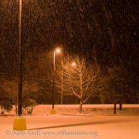 Snow Falling on Parking Lot