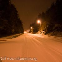 Early Morning Snow Shower on Sawmill Creek Road