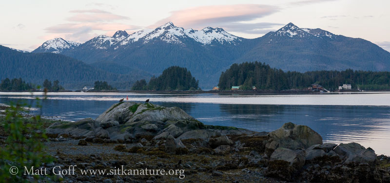 Early Morning Panorama from Sage Beach