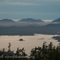 Vieiw from Harbor Mountain.