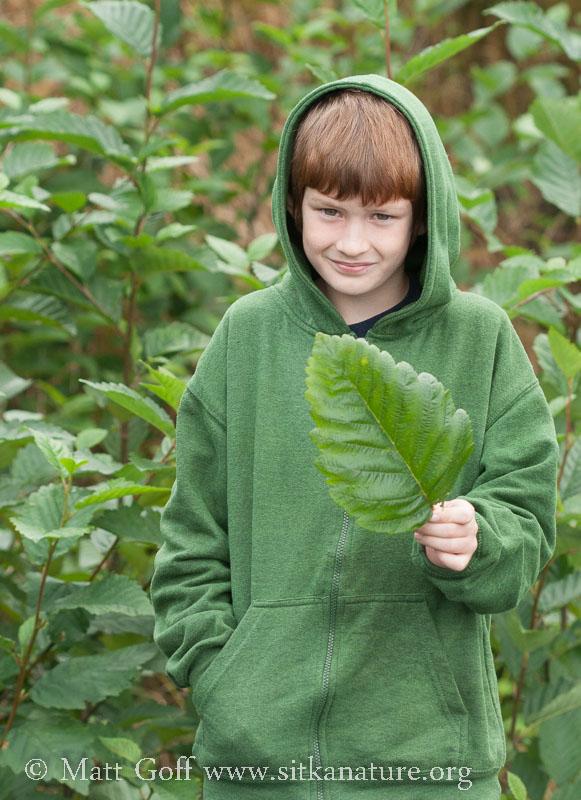Connor with Big Alder Leaf
