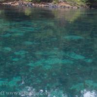 No Thorofare Bay