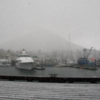 Crescent Harbor Flurry