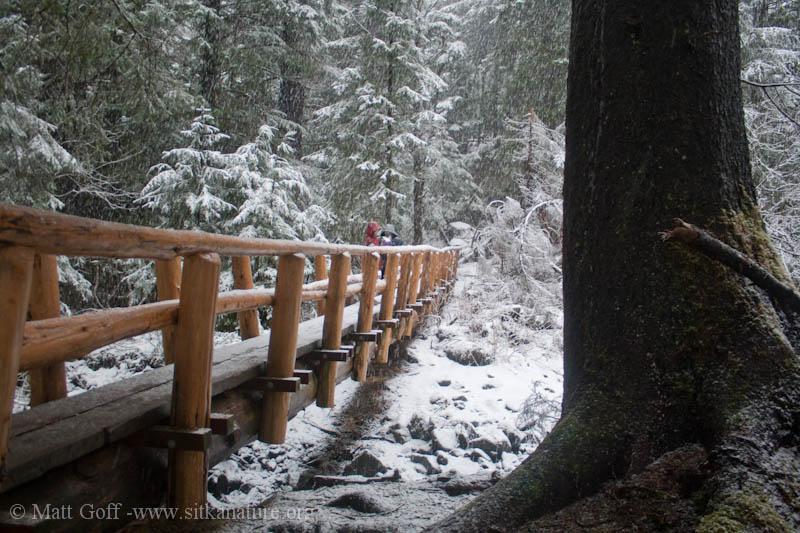 Empty Creek Bridge