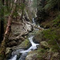 Herring Cove Creek