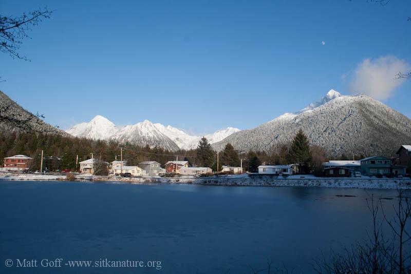 Swan Lake Mountain View