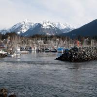 Tsunami Currents in Crescent Harbor