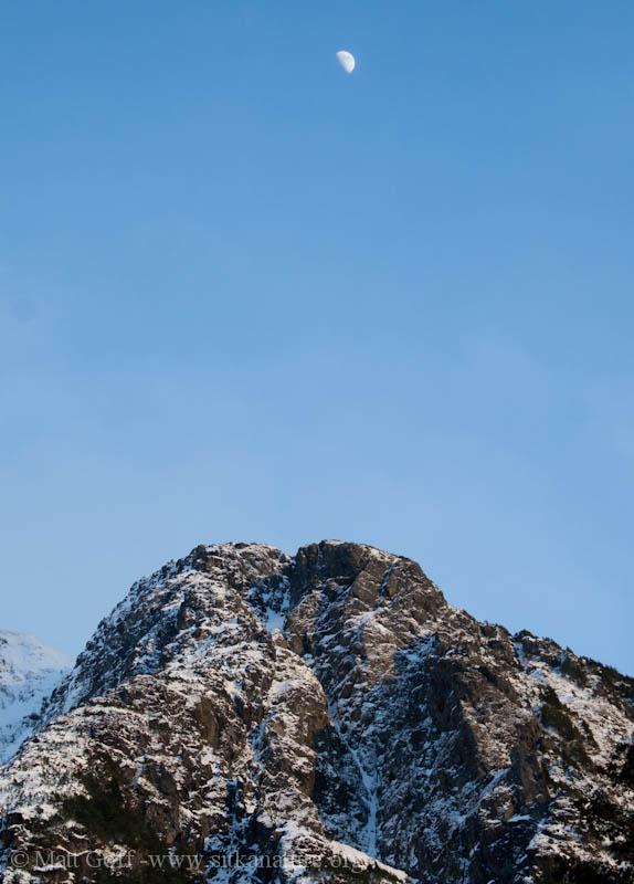 Bear Mountain Moon