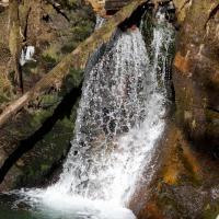 Herring Cove Trail Small Falls