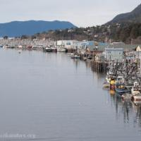 Herring Fishing Fleet