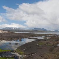 Low Island View of Mt. Edgecumbe