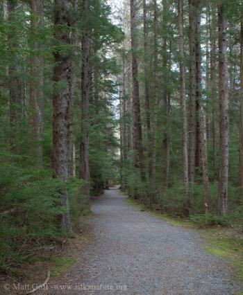 Totem Park Trail