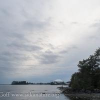 Evening Overcast