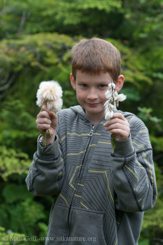 Connor with Cottongrass