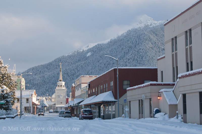 Snowy Downtown Sitka