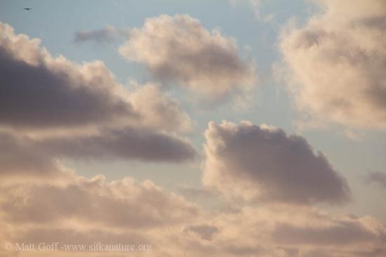 Clearing Skies