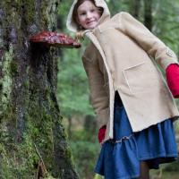 Rowan with a Shelf Fungus