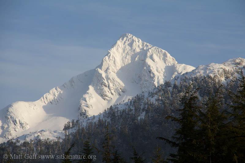 Snow Covered Verstovia