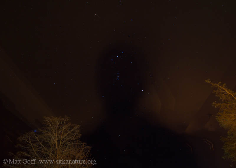Orion and Shadow