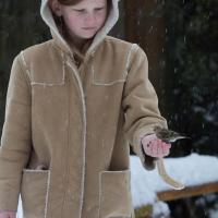 Rowan with a Pine Siskin