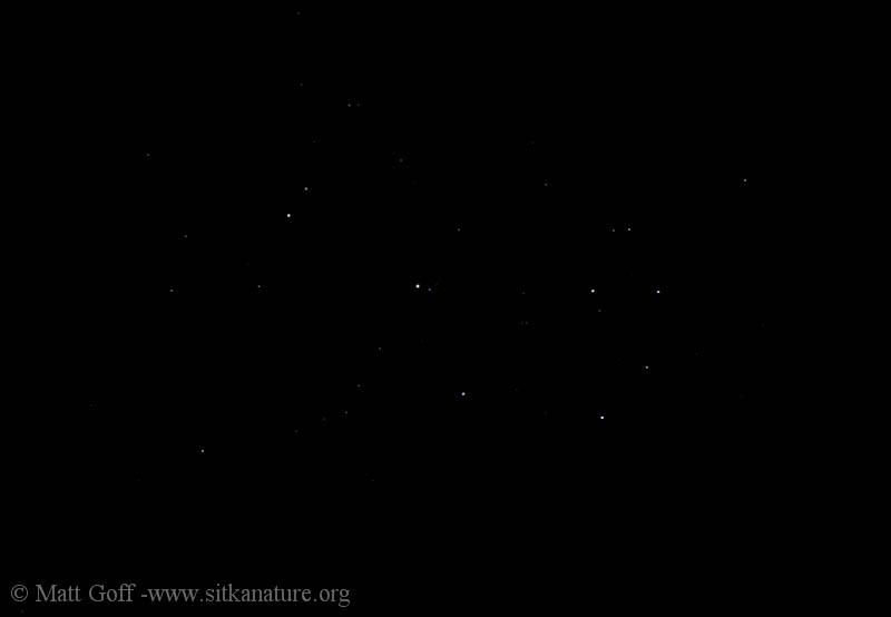 Pleiades (dark)