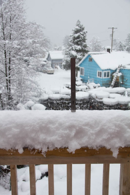 Late Winter Snowfall