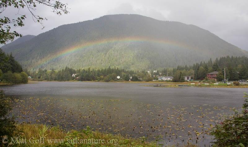 Gavan Hill Rainbow