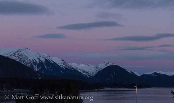 Pink and Purple over the Mountains