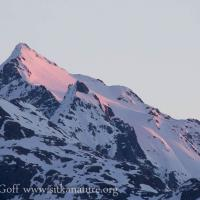 First Light on Peak 4900