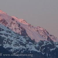 Alpenglow on Peak 4900