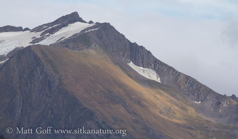 Bear Mountain Slopes