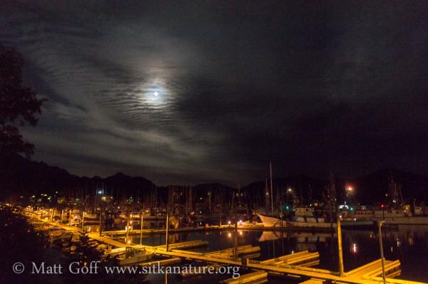 Full Moon over Crescent Harbor