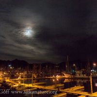 Full Moon over Crescent Harbor