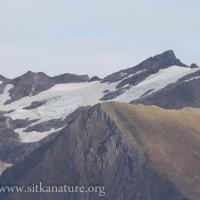 Bear Mountain Ice