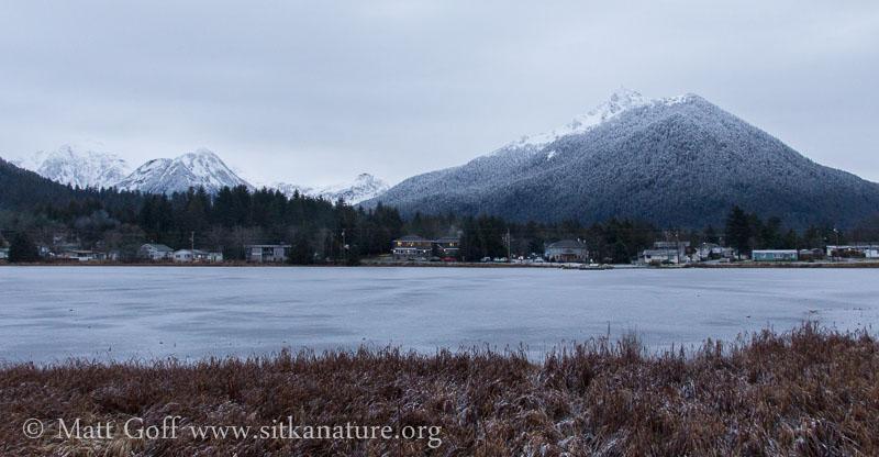 Swan Lake Winter View